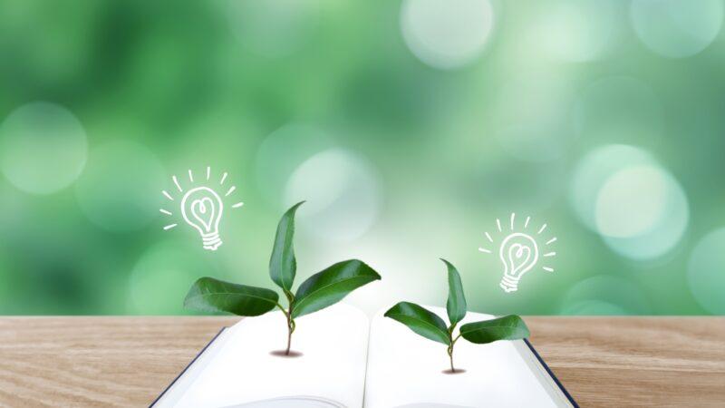 学力に自信が持てるようになると、積極的に学習を取り組めるようになります。